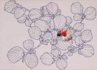 赤い石 a red stone | 2017 | 242×333mm | oil, ballpoint pen on canvas