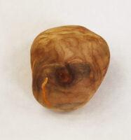 木の石 a wooden ston | 2021 | 55×60×40mm | wood foundation acrylic