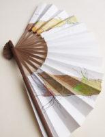 笹(横) | 2020 | 195×325mm | 扇子に鉛筆、墨、アクリル
